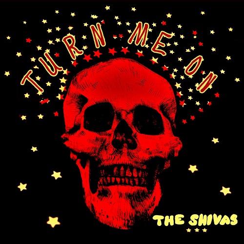 Turn Me On - The Shivas